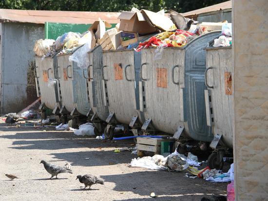 Муниципалитетам Башкирии рекомендовали заняться мусором