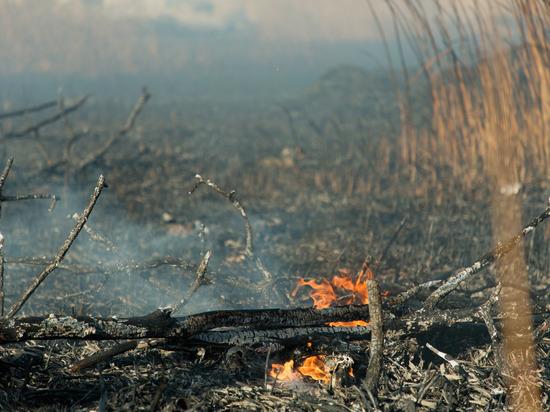 Волгоградцев предупреждают о высокой пожароопасности в выходные