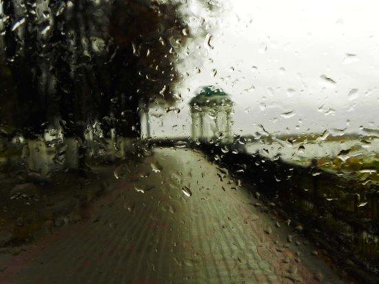 Синоптики предупреждают ярославцев о дождях и холодах