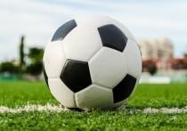 В Пскове пройдет предварительный этап Всероссийский турнира по футболу «Подмастерья»