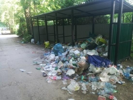 В Зеленоградске городское кладбище оставили без мусорных контейнеров