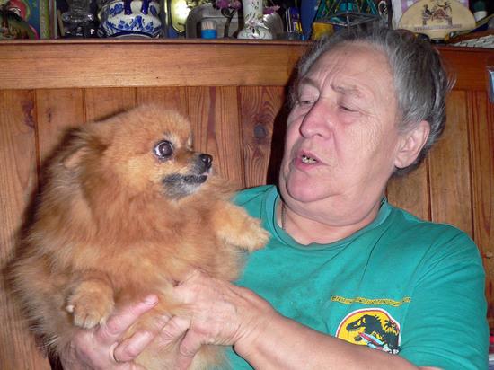 Как выбрать собаку для пожилого человека