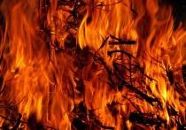 В Удмуртии в пожаре сгорел садовый дом и прилегающие постройки