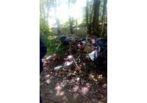 На одной из могил на Мироносицком кладбище в Пскове устроили свалку