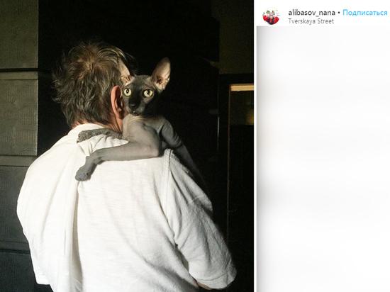 Аферист, обманувший семью Алибасова на 800 тысяч, попросил вернуть кота