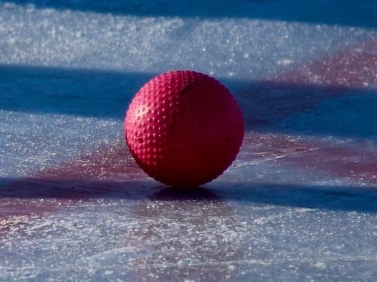Федерация хоккея с мячом извинилась за запрет на работу журналистов