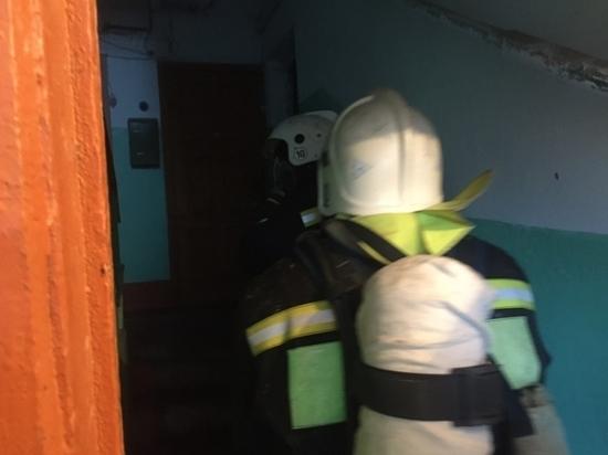Граната и два пожара. Что ликвидировали тульские спасатели за сутки