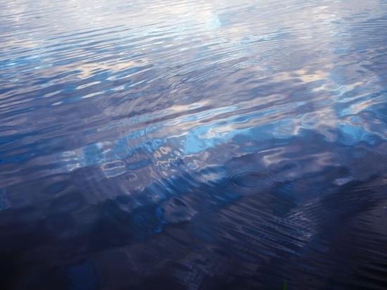В Белеве тело утонувшего ребенка достали из воды лишь на третьи сутки
