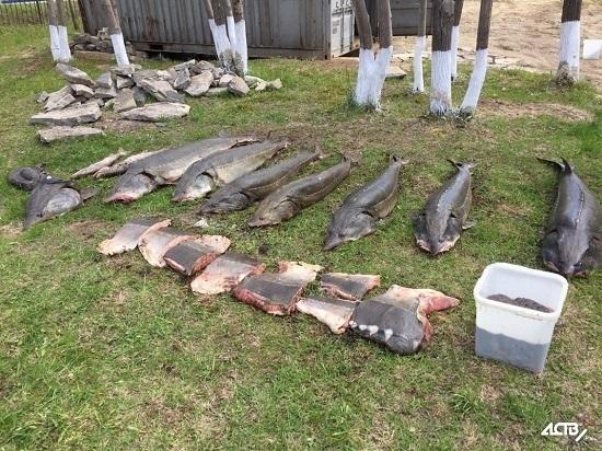 В Москальво задержали браконьеровкалужатников