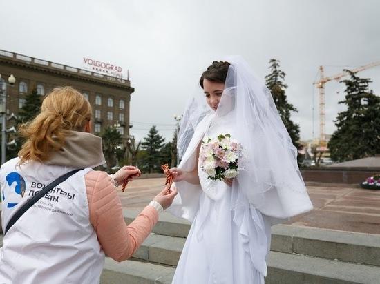 Эксперты назвали Волгоград городом невест
