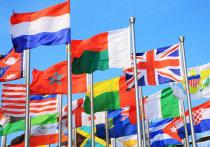 Как дипломатический иммунитет помогает преступать закон