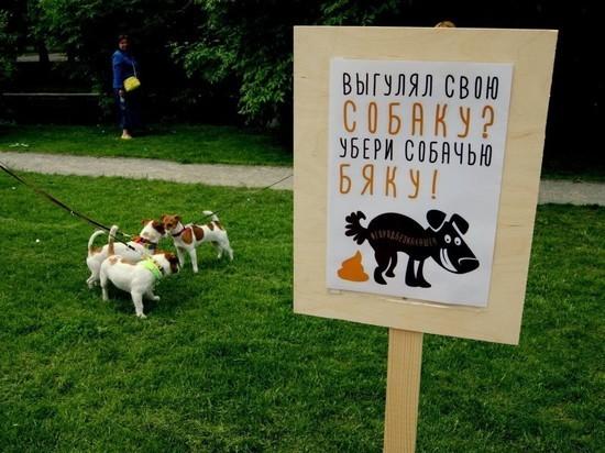 Владимирцам напомнили об ответственности за содержание собак