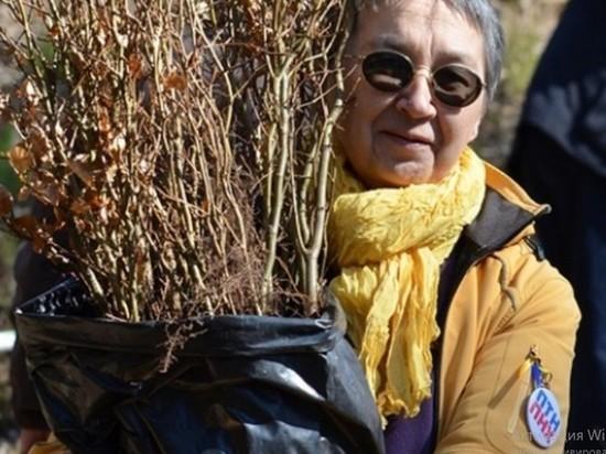 Эколог из Калининграда запросила политическое убежище в Германии