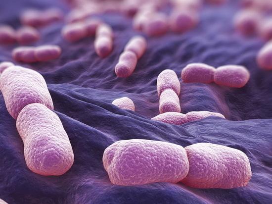 В Воронежских магазинах найдены бактерии листерии