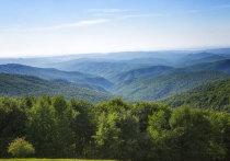 Идея создания национального парка «Крымский» на базе Крымского природного заповедника неминуемо приведет к экологическому кризису на полуострове
