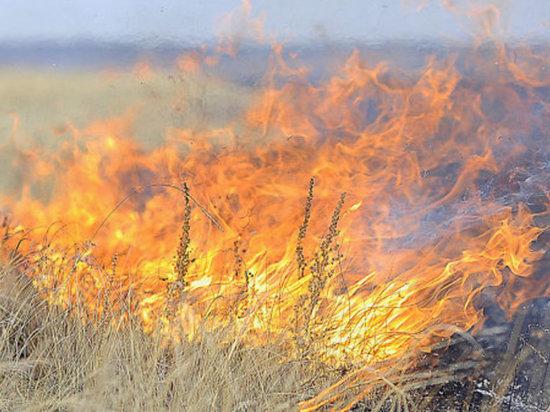 В связи с жарой в Калмыкии высока вероятность чрезвычайных ситуаций