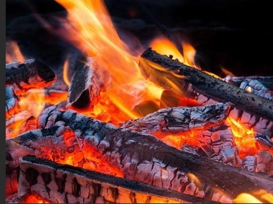 В Бурятии за сутки потушили 13 лесных пожаров из 14
