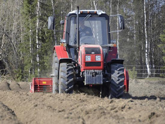 Посев картошки на Полярном круге завершают на Ямале