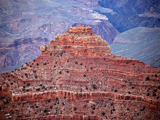 Ученые разобрались, что изображают 16 геоглифов в пустыне Наска