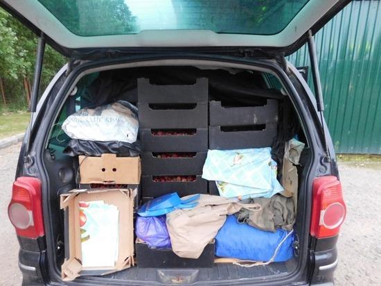 Девять нарушений при ввозе в Псковскую область товаров обнаружили в выходные