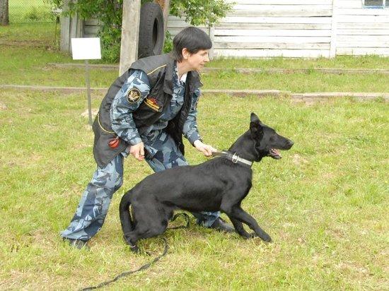 Кинолог рассказала о службе собак в смоленском СИЗО