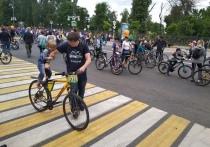 Правила и психология: Как велосипедисту остаться целым на дорогах Твери