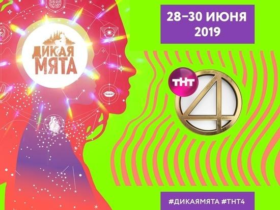 ТНТ4 проведёт дикий стендап на «Дикой Мяте»