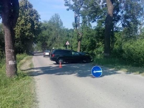 Под Калининградом «Фольксваген» врезался в дерево