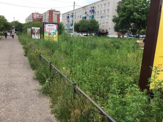 Дефицит бюджета: жители Комсомольска-на-Амуре сами стригут траву