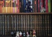 Прочитать и не забыть: летние книги для каждого знака Зодиака