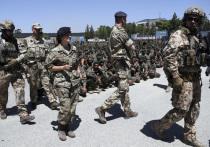 В НАТО заговорили о возможном конфликте с Россией