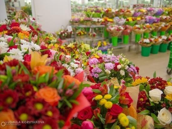 Цветы по оптовым ценам: где в Петрозаводске выгодно купить праздничный букет. ФОТО