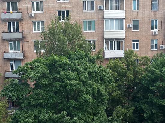 Бой с тенью: москвичи поспорили из-за старых деревьев возле жилых домов