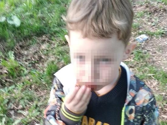Подробности похищения мальчика Миши отцом в Челябинске