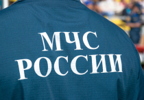 В Тверской области пожарные семь часов тушили огонь