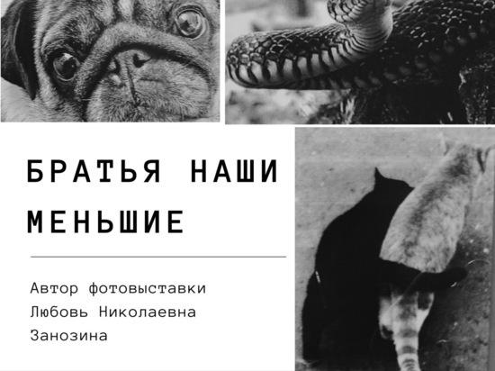 Все желающих приглашают на выставку «Братья наши меньшие» в Серпухов