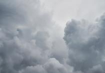 В Брянске рассказали, почему население не предупредили об урагане