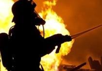 Причиной 30 пожаров в Калмыкии стала 42-градусная жара