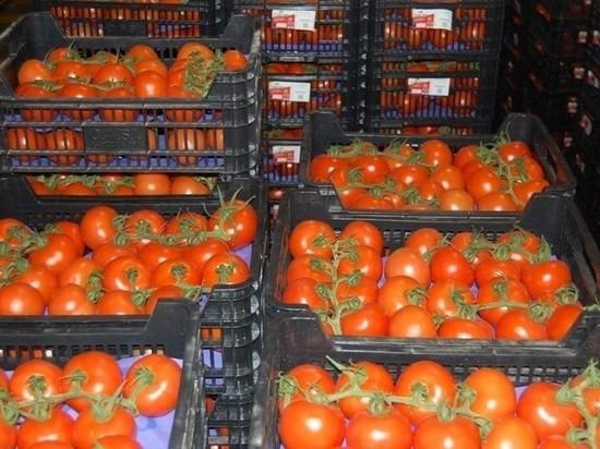 В Калининградскую область ввезли 19 тонн зараженных овощей из Македонии