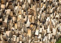В Порховском районе делянку не очистили от порубочных остатков