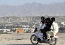 В Псковскую область за год приехало шесть человек из Афганистана