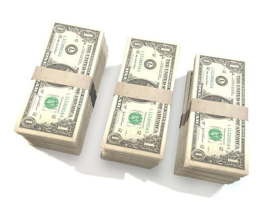 Иностранец попытался дать взятку в долларах сотруднику МАПП Убылинка