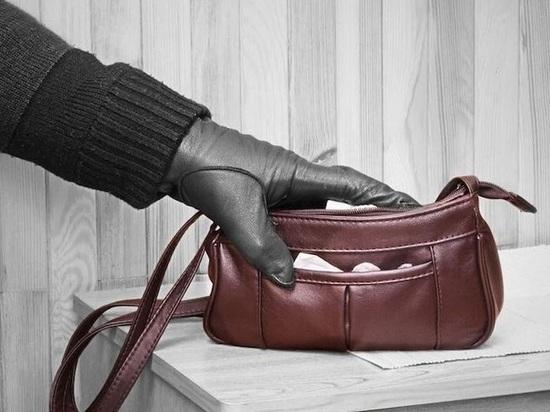 Жительница Твери спровоцировала мужчину своровать из ее сумки деньги