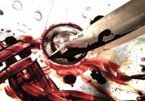 Пьяный ямалец убил сожительницу ударом ножа в грудь
