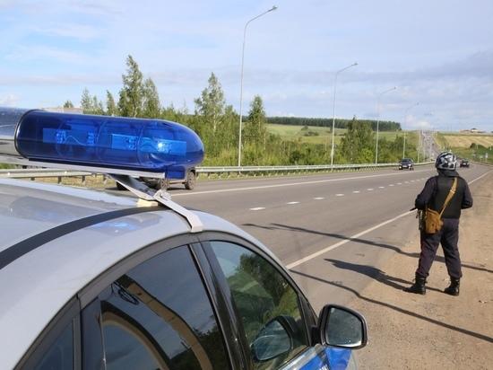 Росгвардейцы в Мордовии  задержали пьяного водителя