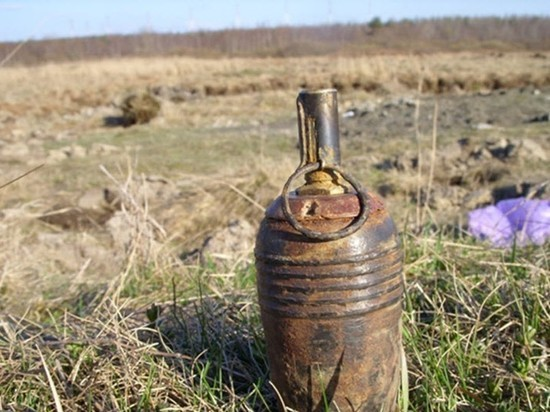 В Правдинском городском округе обнаружены мины и гранаты времён ВОВ