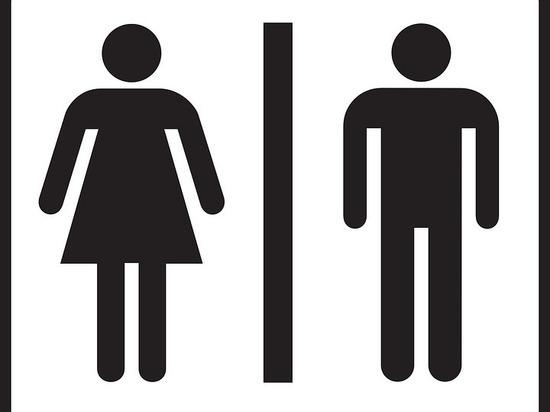 Где можно будет сходить в туалет на День города в Петрозаводске