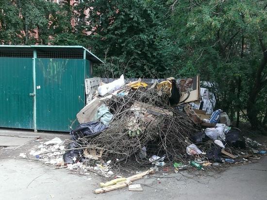 Как в Петрозаводске раздельно утилизировали мусор в 50-х – 60-х годах. ФОТО