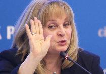 ЦИК может отменить муниципальные выборы в Петербурге из-за нарушений