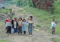 Гватемала не хочет стать пристанищем для сальвадорцев и гондурасцев